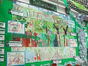 Year 3 Rainforest Layers collage KS2 | Rainforest Unit ...