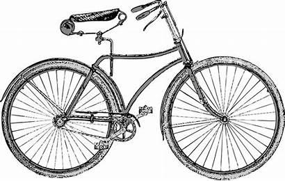 Bicycle Bike Bicicleta Retro Vector Pixabay Graphic
