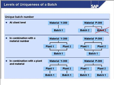 Modification Order Meaning by Batch Management Erp Operations Scn Wiki