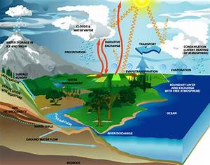 The Water Cycle   Smap