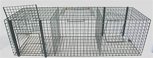 Piege à Rat Efficace : pi ge oiseaux 3 compartiments ukal ~ Dailycaller-alerts.com Idées de Décoration