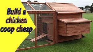Building A Simple Chicken Coop Plans - Escortsea