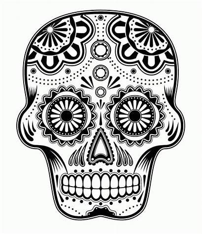 Coloring Sugar Skull Pages Popular