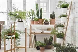 Vasi e piante da esterno accessori giardinaggio ikea