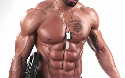 Bodybuilding Wallpapers Muscle Bodybuilder Desktop Builder Building