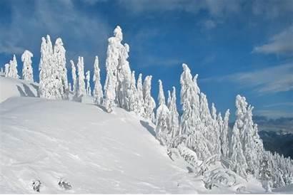 Landscape Winter Landscapes Snow Nature Lovely Desktop
