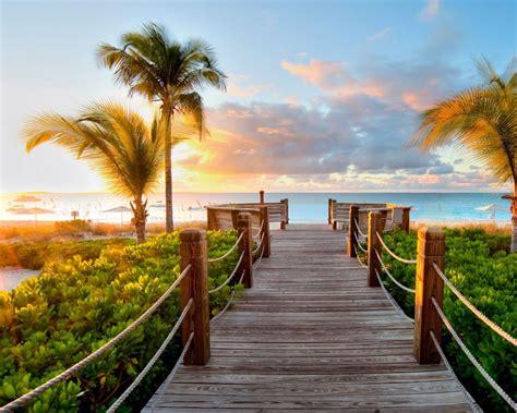 paseo por una playa tropical  fondos de