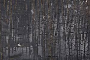 Burned Wood Texture | photo page - everystockphoto