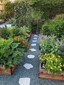 Companion Planting Benefits Garden Companion Planting
