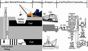 Tree Of Life Diagram Coal