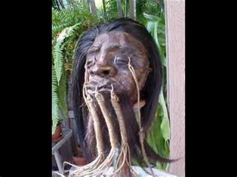 copy  real headhunters shrunken heads fascinating