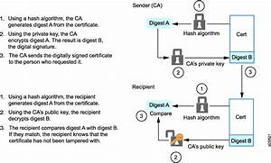 Understanding Certificates And Pki
