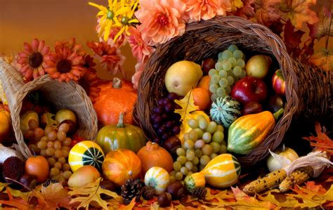 the importance of thanksgiving
