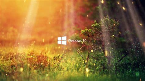 nature 1080p windows 10 series wallpaper youtube