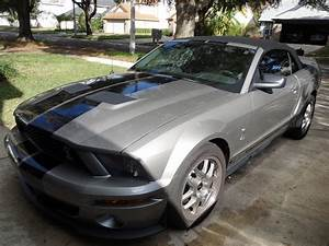 2009 Ford Shelby GT500 - Pictures - CarGurus