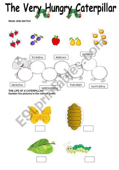 hungry caterpillar worksheet esl worksheet