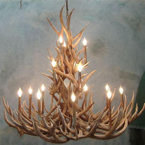 20 collection of deer antler chandelier