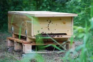 Bienenhaus Selber Bauen : bienenkiste selber bauen heimat f r die wichtigsten ~ Articles-book.com Haus und Dekorationen