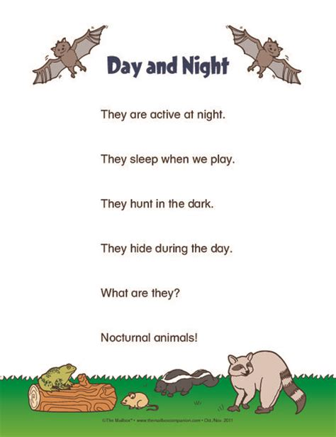 nocturnal animals preschool lesson plans the 25 best nocturnal animals ideas on 418
