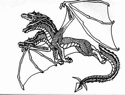 Coloring Dragon Pages Skeleton Popular