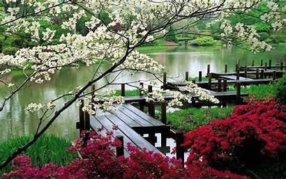Scenery Japan Japanese Backgrounds Wallpapers Wallpapersafari Daily