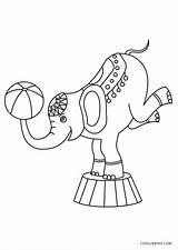 Coloring Circus Pages Elephant Printable sketch template