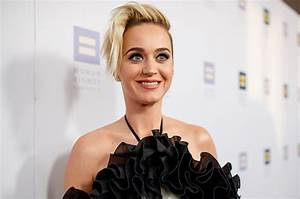 Katy Perry Channels Guy Fieri For National Look-A-Like Day ...