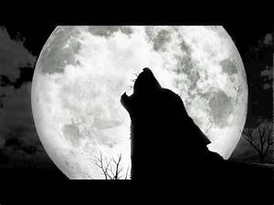 Wolves Howling At The Moon - YouTube