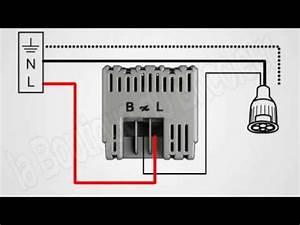 Variateur De Lumiere Legrand : cablage ampoule led eco variateur celiane de legrand avec ~ Dailycaller-alerts.com Idées de Décoration