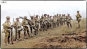 Colourise History | 29th Battalion, 8th Brigade, 5th ...