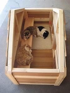 Best 25 outdoor cat houses ideas on pinterest outdoor for Best dog door for winter