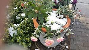 Rosen Im Topf überwintern : topfrosen berwintern pflanzen f r nassen boden ~ Orissabook.com Haus und Dekorationen