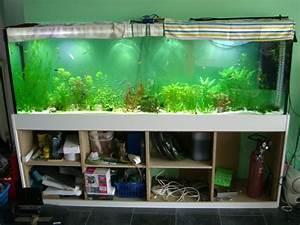 Aquarium Unterschrank Ikea : optimale anzahl der unterschrank sockel aquarium forum ~ A.2002-acura-tl-radio.info Haus und Dekorationen