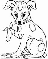 Coloring Dog Pages Popular sketch template