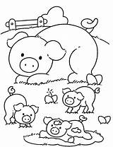 Coloring Pig Pages Cute Drawings Trending Days Last sketch template