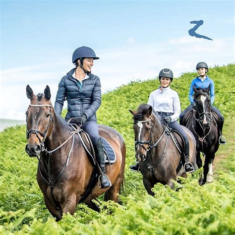 horse together riding