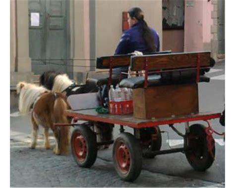 cinzia zerbini carrozze per pony 28 images calesse cavallo clasf