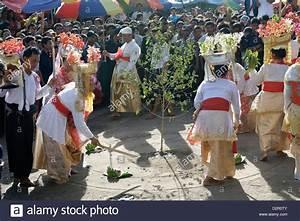 Fällen Von Bäumen : ritual stockfotos ritual bilder alamy ~ Eleganceandgraceweddings.com Haus und Dekorationen