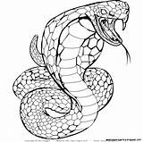 Snake Realistic Coloring Drawing Cobra Snakes Step Printable Sheets Sketch Template Getdrawings Getcolorings Highest sketch template