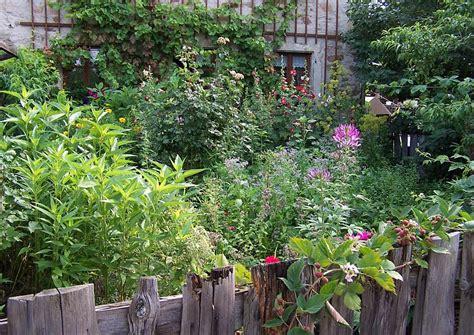 pflanzen für den vorgarten typische bauerngarten pflanzen