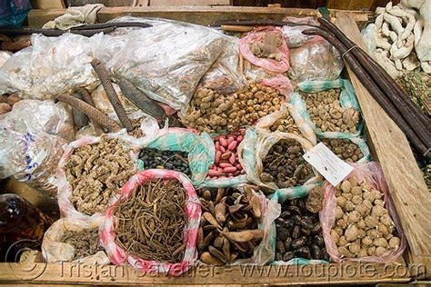 medicinal plants market, laos