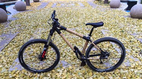 amendoim flooring pros and cons building the mountain bike of 28 images build a bike
