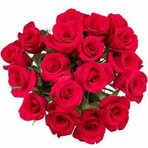 All Graphics » Beautiful Bouquet of Red Roses