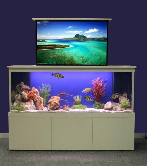 cuisine ouverte sur salon la décoration avec un meuble aquarium archzine fr