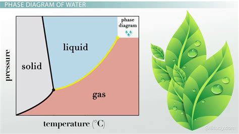 Water Diagram by Phase Diagram Of Water Vs Other Substances Differences