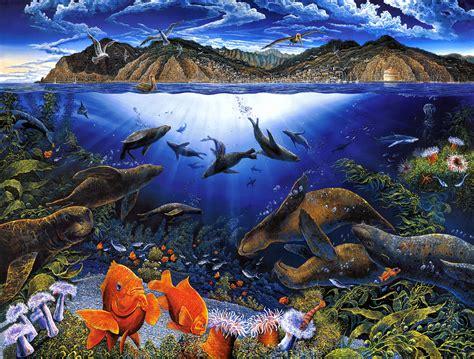 Sea Life Hd Wallpaper Background Image 2027x1537 Id