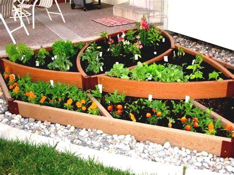 backyard home gardening  vegetables simple vegetable