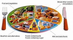 Alimental  5 Tips For Kids Nutrition Using The Eat Well Plate