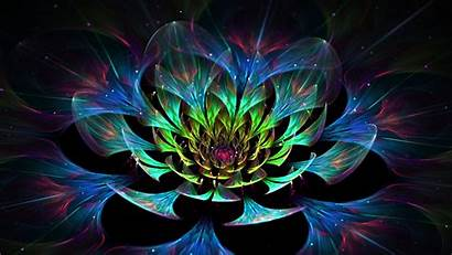 Abstract Flower 3d Lotus Colorful Wallpapers