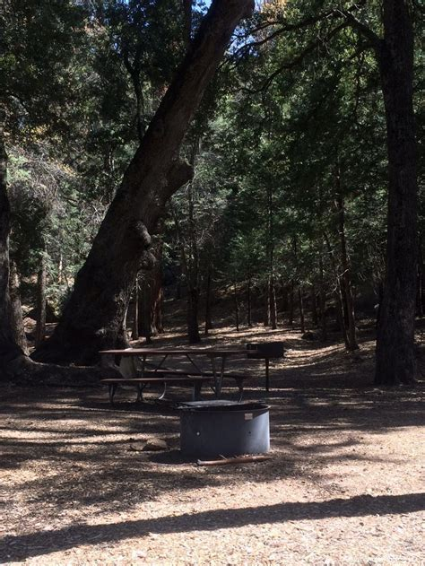Fry Creek Campground ,Palomar Mountain ,California